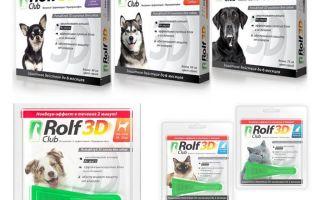 Köpekler ve kediler için pire Rolf Club 3D bırakır