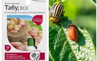 Colorado Patates böceği için tabu ilaç