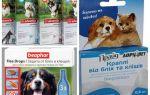 Köpekler için pire ve kene ilaçları