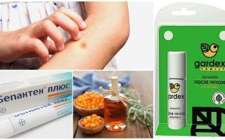 Sivrisinek ısırıkları ve kara sinekler için dükkan ve halk ilaçları