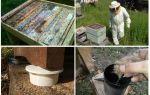 Arı kovanı halk ilaçları karıncalar kurtulmak için nasıl