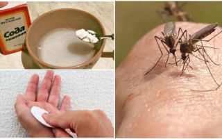 Çocuklar ve yetişkinler için sivrisinek ısırıkları soda çözeltisi