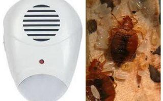 Bedbugs gelen kovucu haşere kovucu