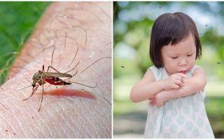 Sivrisinek ısırığı kaç gün sürer?