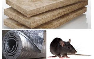Ne tür bir yalıtım fareler ve fareler yemez