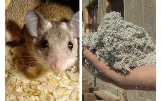 Ne tür bir yalıtım fareyi yemiyor?