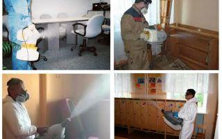 Tahtakuruları için sıcak sis tedavisi