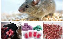 Sıçanlar ve fareler için zehir