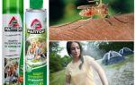 Sivrisinekler Raptor bölgesinden korunması