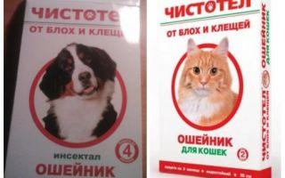Kediler ve köpekler için pire kırlangıç balığı yaka
