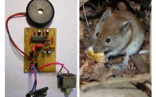 Ultrasonik repeller fareler ve fareler kendi elleriyle