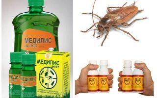 Evde ve nasıl hamamböceği zehirlemek için