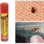 Bedbugs gelen Dichlorvos