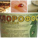 Tahtakuruları gelen Chlorofos