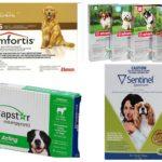 Köpekler için pire tabletleri