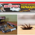 Hamamböceği-2 Dohloks