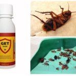 Hamamböceklerinden alın