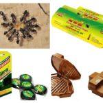 Karınca tuzakları