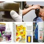 Çocuklarda bitlerin tedavisi