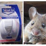 Sıçan ve farelerden gelen ultrasonik kovucu Temiz ev