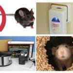 Dağıtıcıyı farelerden yükleyin