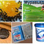 Böcek kimyasalları