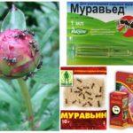 Pestisitlerin kullanımı