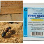 Böcek kontrol yöntemleri