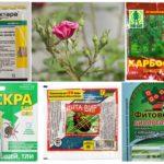 Bitki koruma için toksik kimyasallar