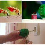 Sivrisinek fumigator kullanımı