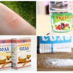 Sivrisinek ısırıkları kaşıntı sirke tuz ve soda kaldırmak yardımcı olacaktır
