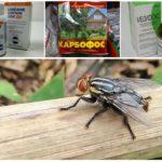 Ağız ve sinekler için kimyasal preparatlar