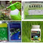 Böcek öldürmek için kimyasallar