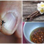 Böceklerle savaşmak için halk ilaçları