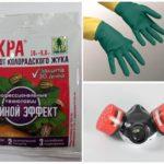 Toksik kimyasallarla çalışırken alınacak önlemler
