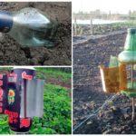 Bahçe küflerini korkutmak için akustik cihazlar