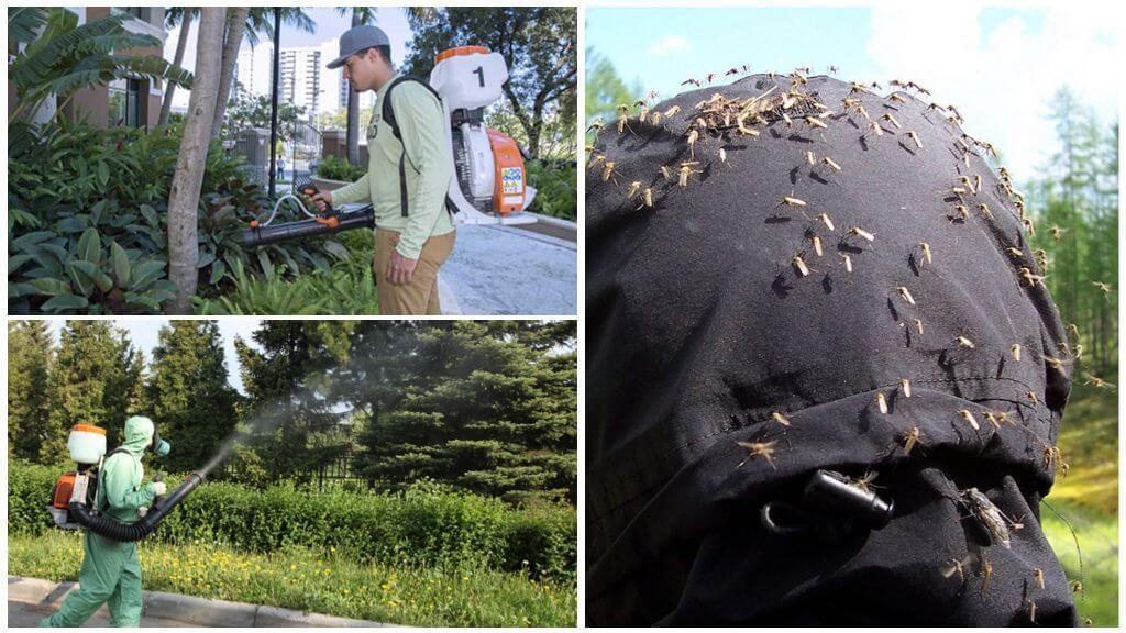 Sivrisineklerden toprakların profesyonel tedavisi