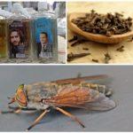 Gadflies ve gadflies ile başa çıkmak için halk yolları
