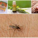 Sokak sivrisinek kovucular