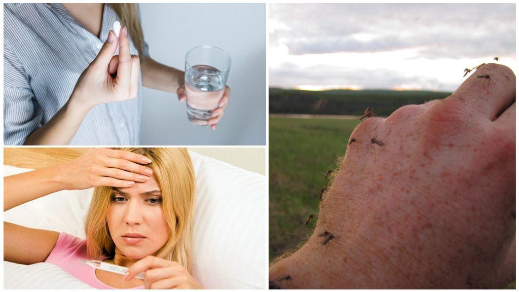 Sivrisinek ısırıklarından gelen bir sıcaklıkta ilaç