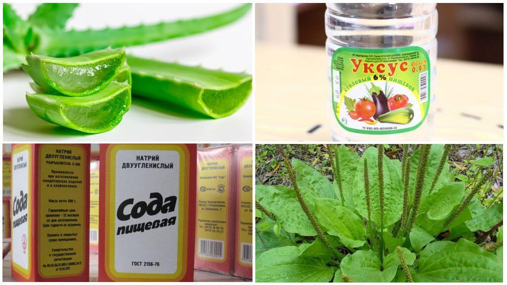 Sivrisinek ısırıkları tedavisi için geleneksel ilaç