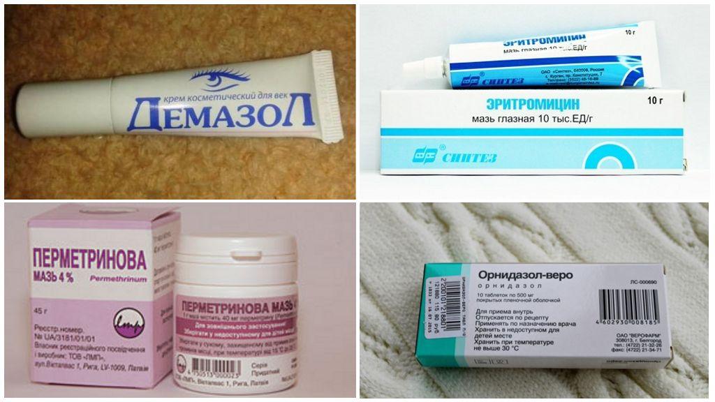 Demodikoz tedavisi için hazırlıklar