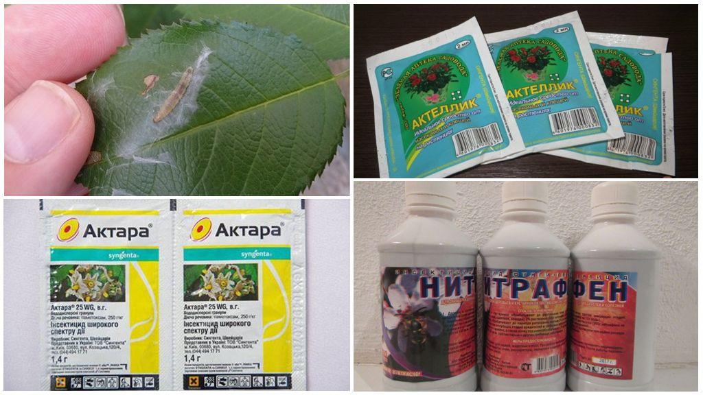 Caterpillar Kimyasalları
