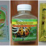 Örümcek akarları ile mücadele için biyolojik ürünler