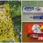 Böcekler için tutkal kapanı