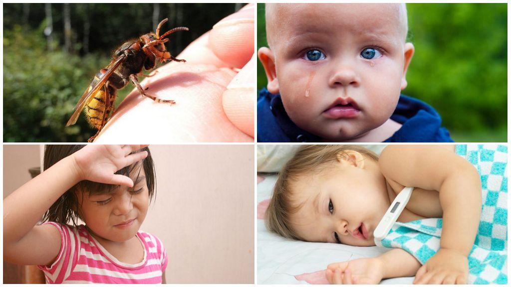 Bir yaban arısı sokmasından sonra sistemik alerjiler