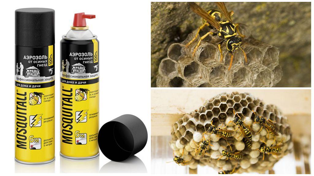Eşekarısı ve yaban arısı yuvalarından Mosquitall aerosol