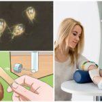 Giardia Testleri