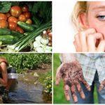 Parazit enfeksiyonunun nedenleri