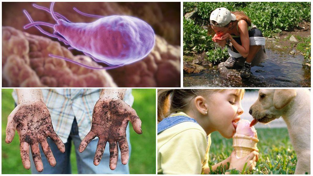 Giardia Enfeksiyonunun Nedenleri